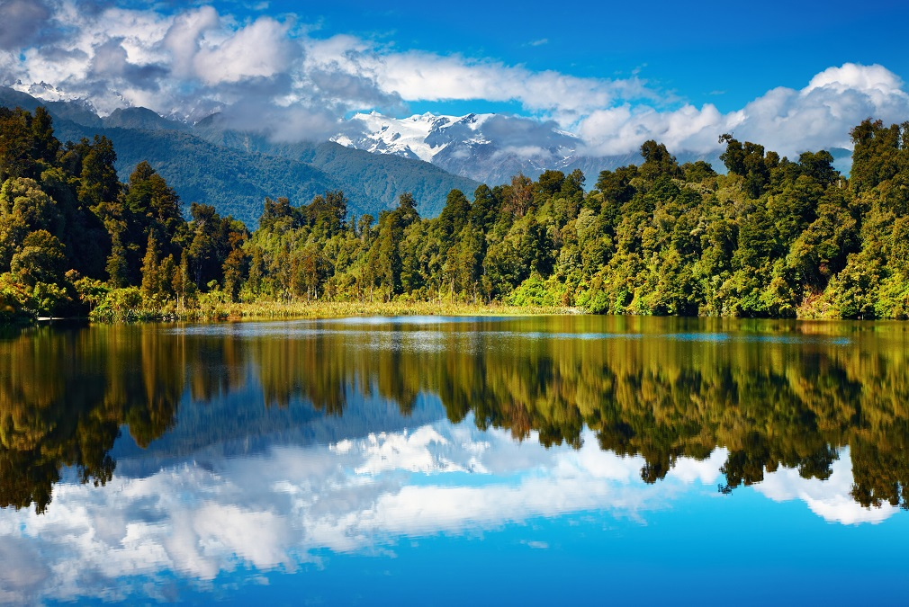 Aj z jazier môžeme čerpať uhlíkovo neutrálne biopalivo