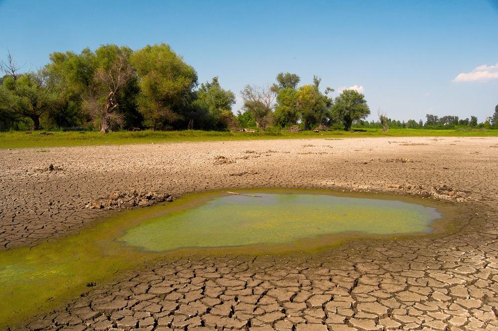 Sucho v Európe sa mení. Je kratšie, ale zato intenzívnejšie
