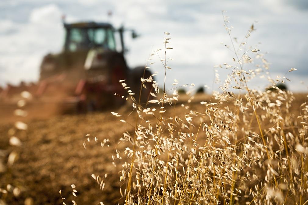 Poľnohospodárstvo stále vyvíja veľký tlak na vodné zdroje, tvrdí EEA