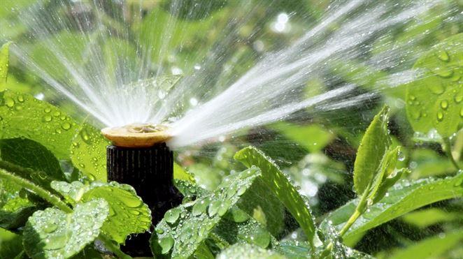 Inteligentný zavlažovací systém znižuje plytvanie vodou