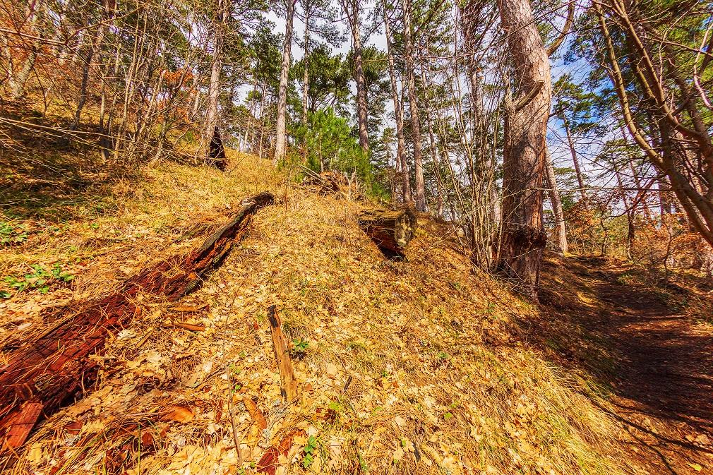 Košická župa chce realizovať opatrenia na zabránenie odtoku vody z územia lesov