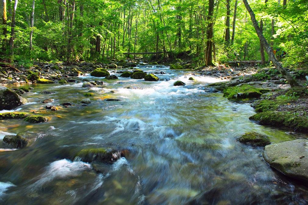 Zlepšenie ekologického stavu vodných útvarov by malo byť prioritou do roku 2030