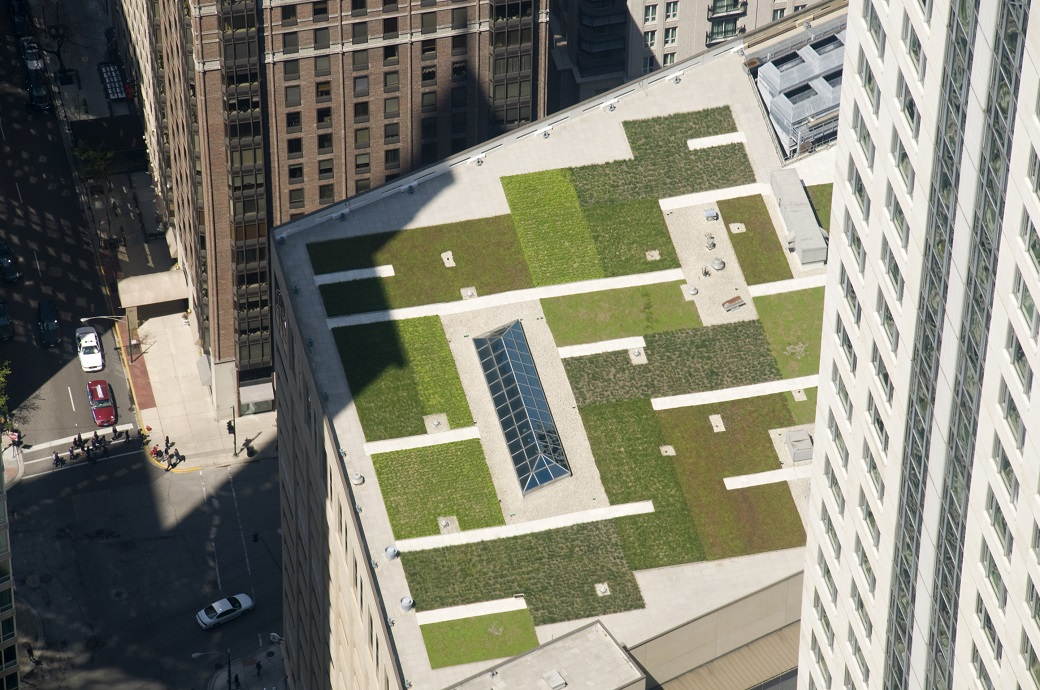 Poľskí vedci vypočítali, kedy sú zelené strechy najefektívnejšie