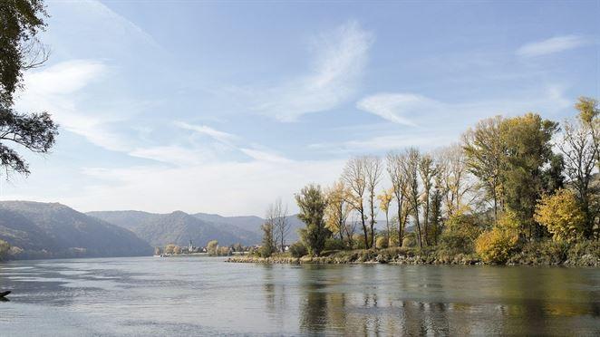 Kvalita vody v Dunaji je priemerná, každoročne sa však zvyšuje