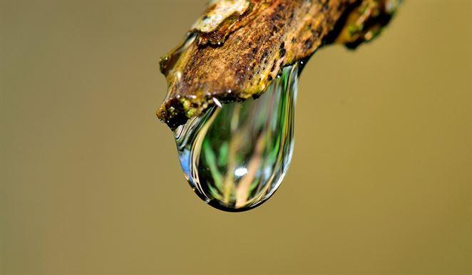 Ako zlepšiť kvalitu vody v Únii? Európski vedci prišli s návrhom