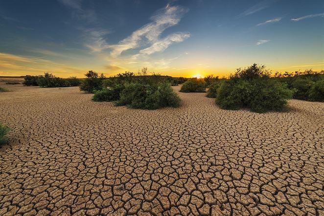 Hore do oblakov: Ako môžeme bojovať proti suchu