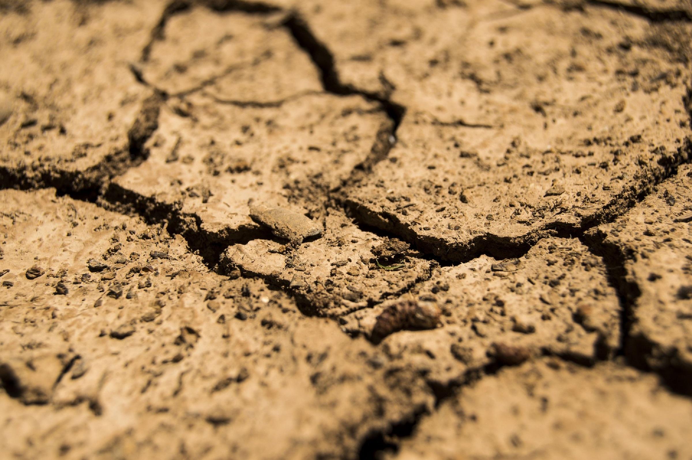 V Texase vyvinuli pôdu, ktorá sa sama zavlažuje vlhkosťou zo vzduchu
