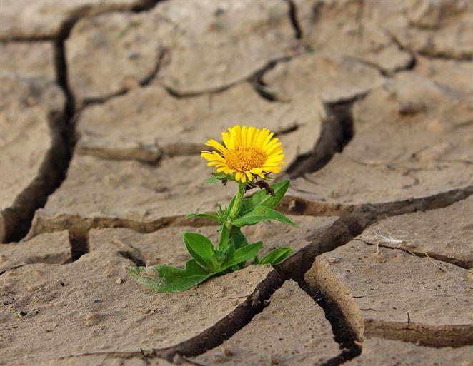 Eurofondy poputujú na riešenie dôsledkov sucha a nedostatku vody