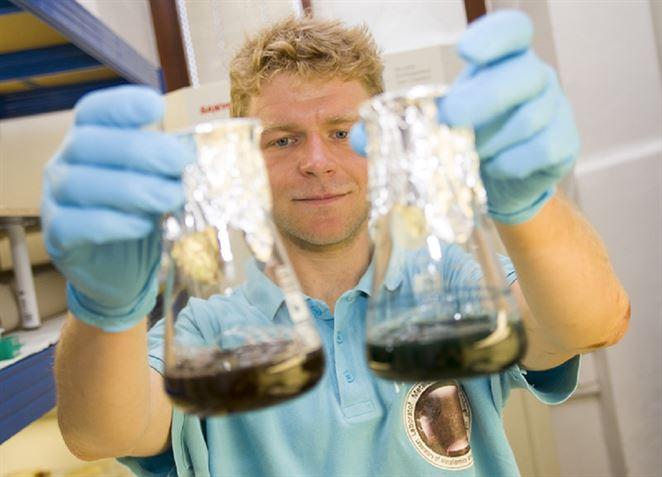 Odpadové vody bez karcinogénov? V Brne si pomáhajú s mikroriasami