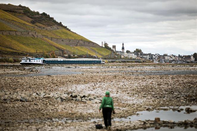 Cestovné kancelárie rušia výletné plavby, Dunaj a Rýn majú nedostatok vody