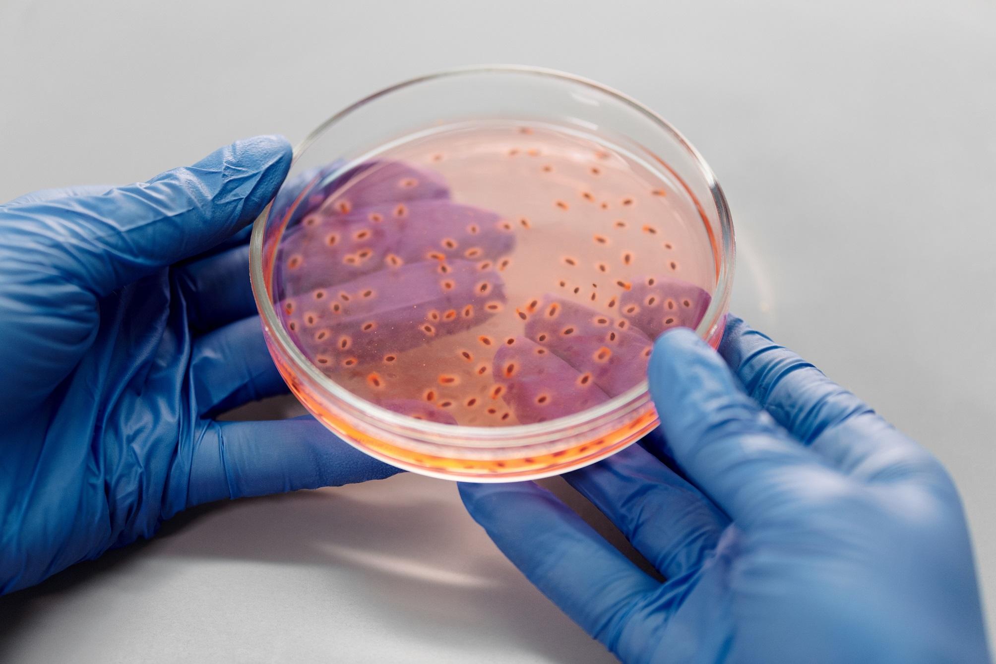 Novoobjavená baktéria odstraňuje z odpadových vôd dusík aj fosfor