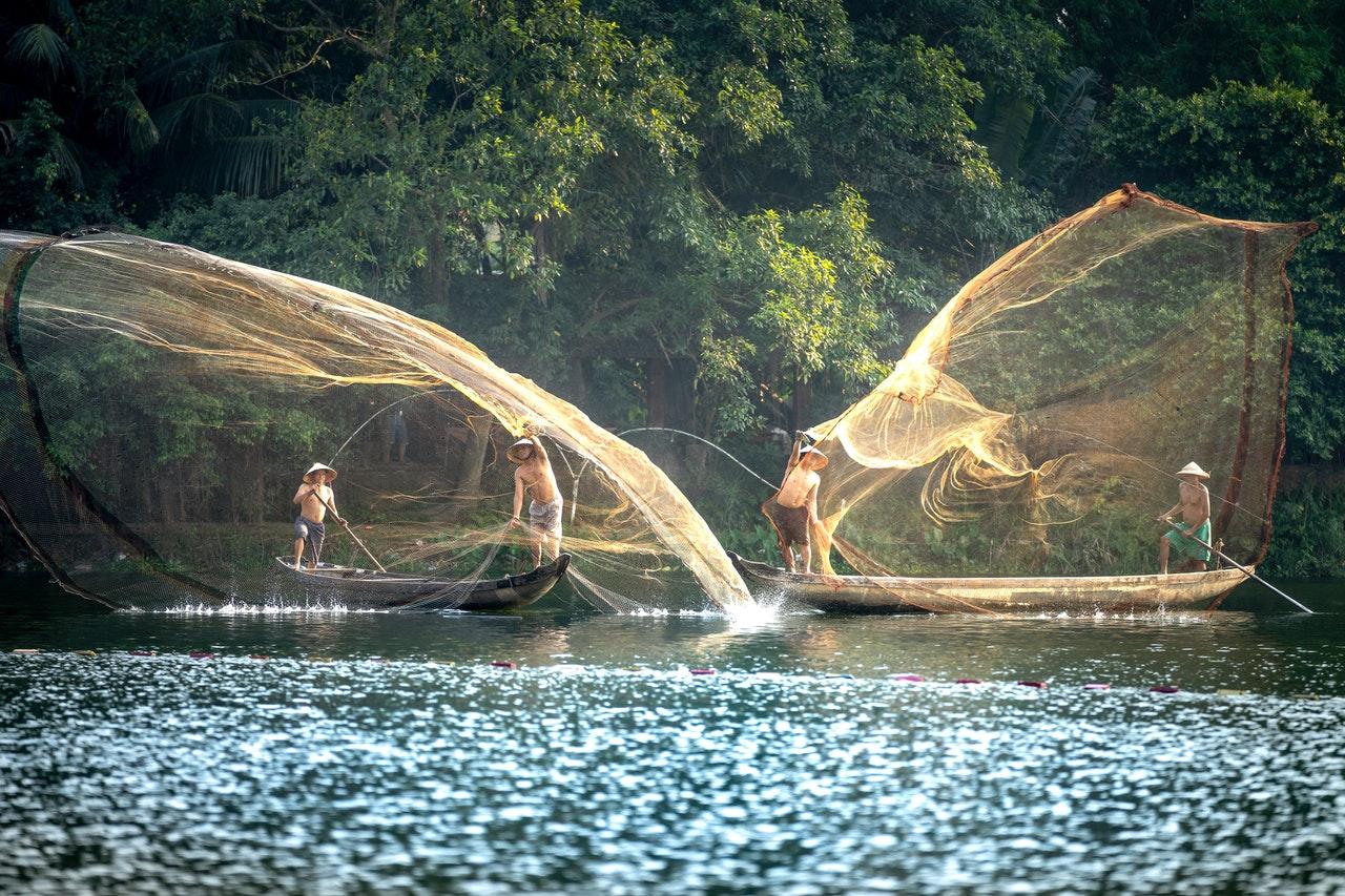 Vodné ekosystémy sú zdrojom polovice celosvetových emisií metánu