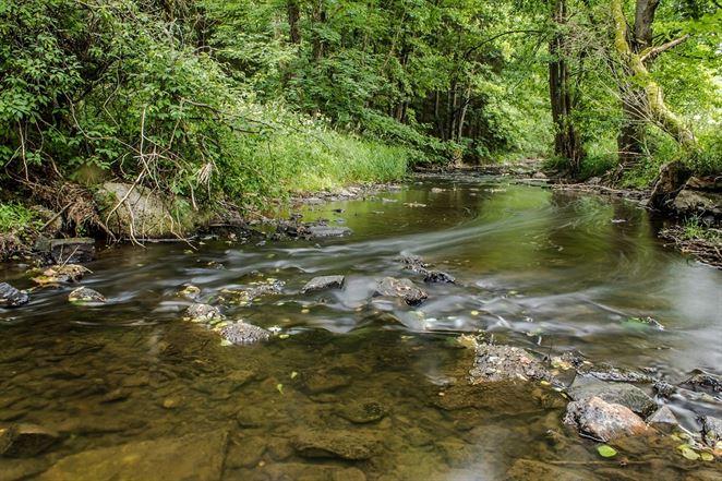 Európska environmentálna agentúra: Kvalita vôd na Slovensku je dobrá