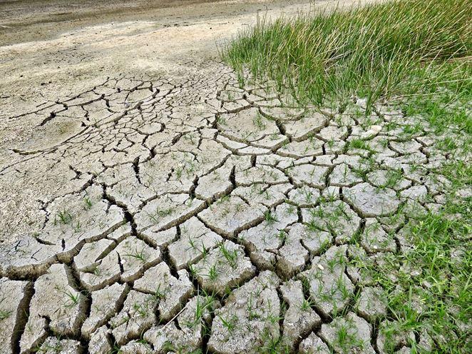 Poľnohospodári prišli v dôsledku vlaňajšieho sucha o 19 miliónov eur