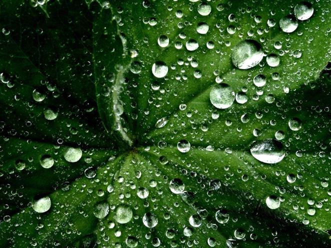"""Novoobjavené prekvapujúce vlastnosti vody by mohli spustiť éru """"zelenej"""" chémie"""